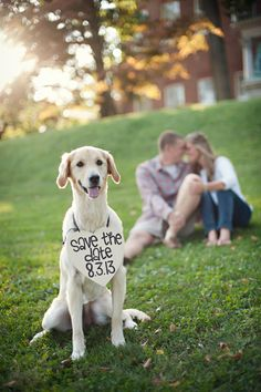 yes-i-do-wedding-pets