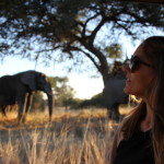 Yes I do African Safari 19 θέλει να μπει